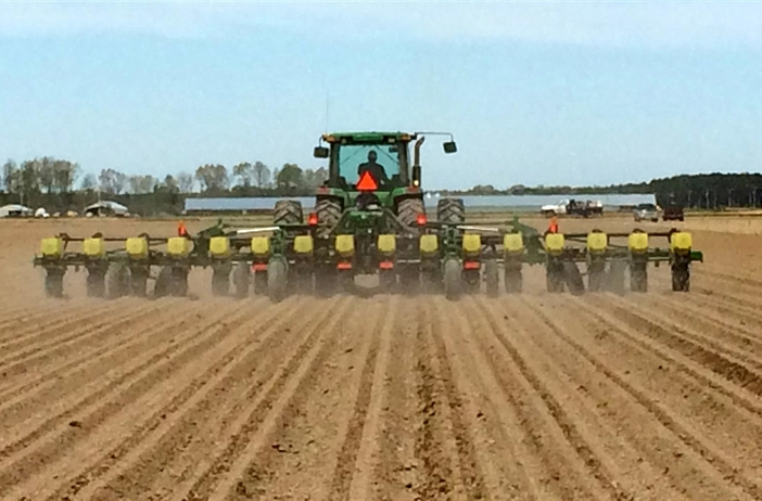 Farmers cautious about corn, soybean season despite projected rise in plantings